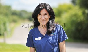 Veterinary Team Photography